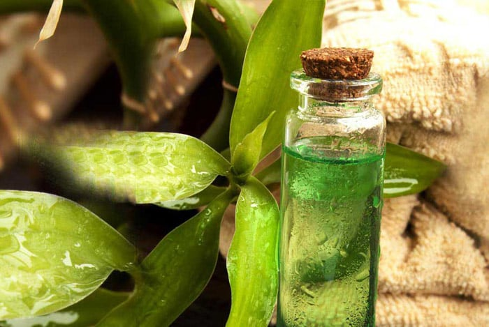 Teafaolaj gyógyít és fertőtlenít